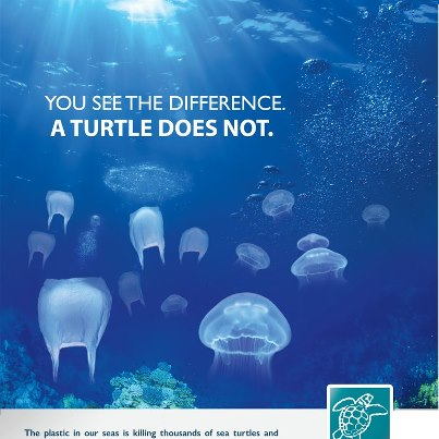 plastic bags and sea turtles